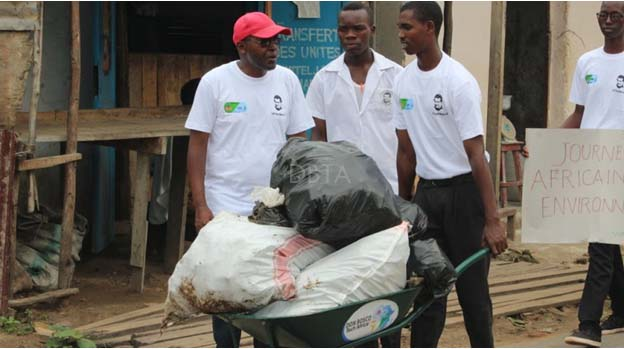 The Africa Environment Day 2020