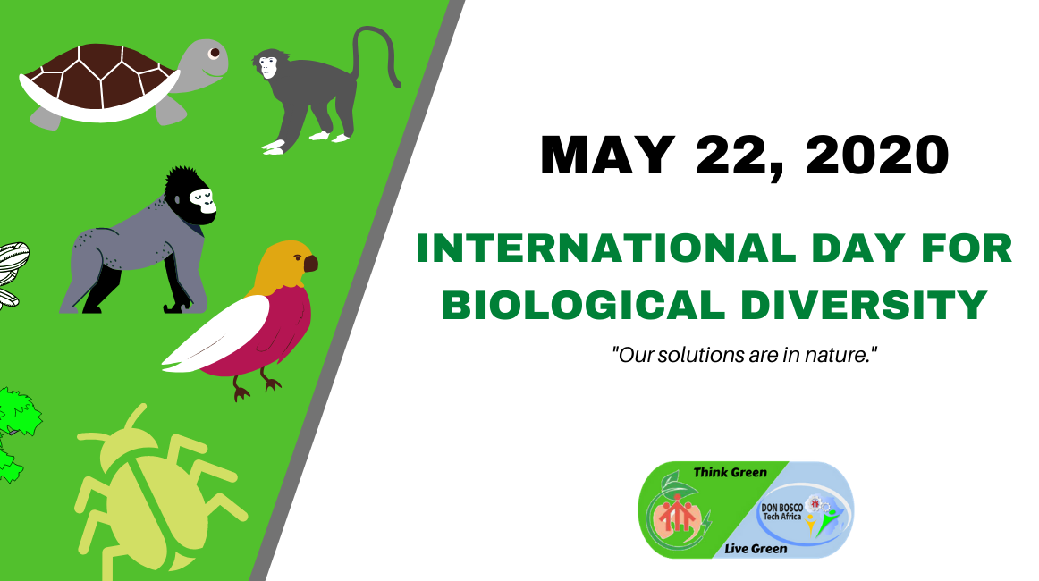 International Day For Biological Diversity 2020